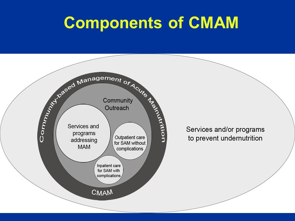 Components of CMAM