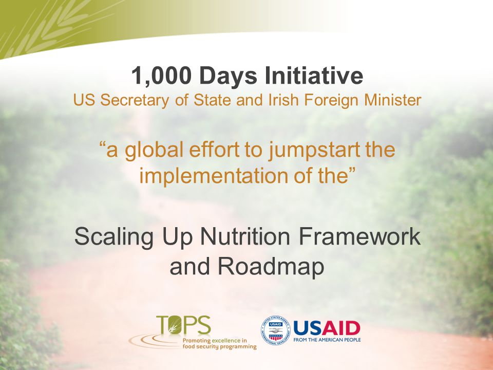 Scaling Up Nutrition Framework and Roadmap