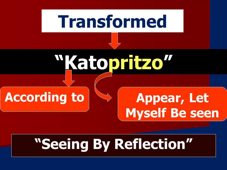 Appear, Let Myself Be seen Seeing By Reflection
