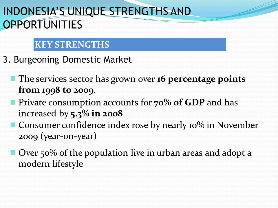 INDONESIA'S UNIQUE STRENGTHS AND OPPORTUNITIES