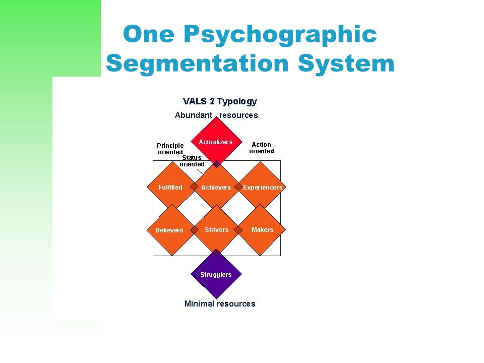 One Psychographic Segmentation System