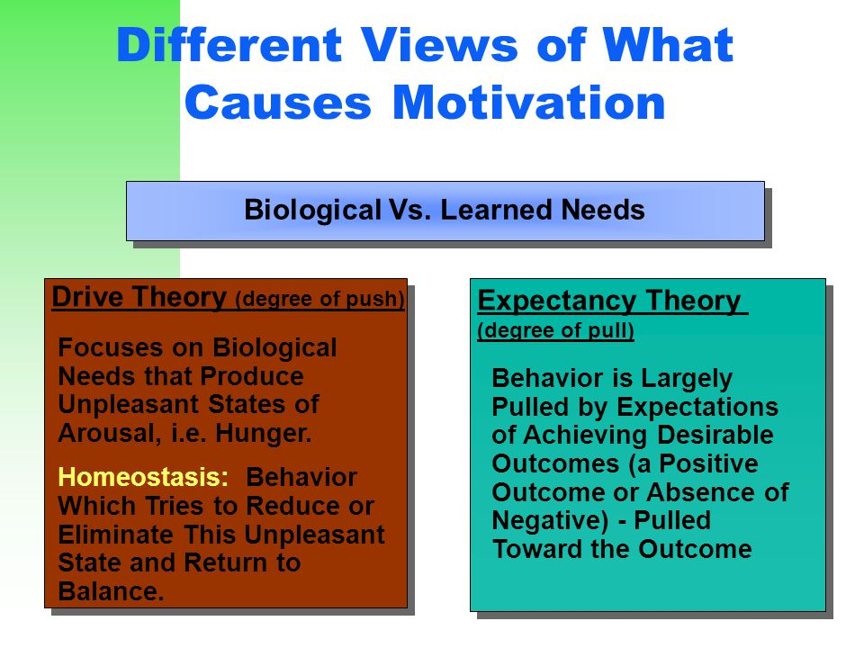 Different Views of What Causes Motivation