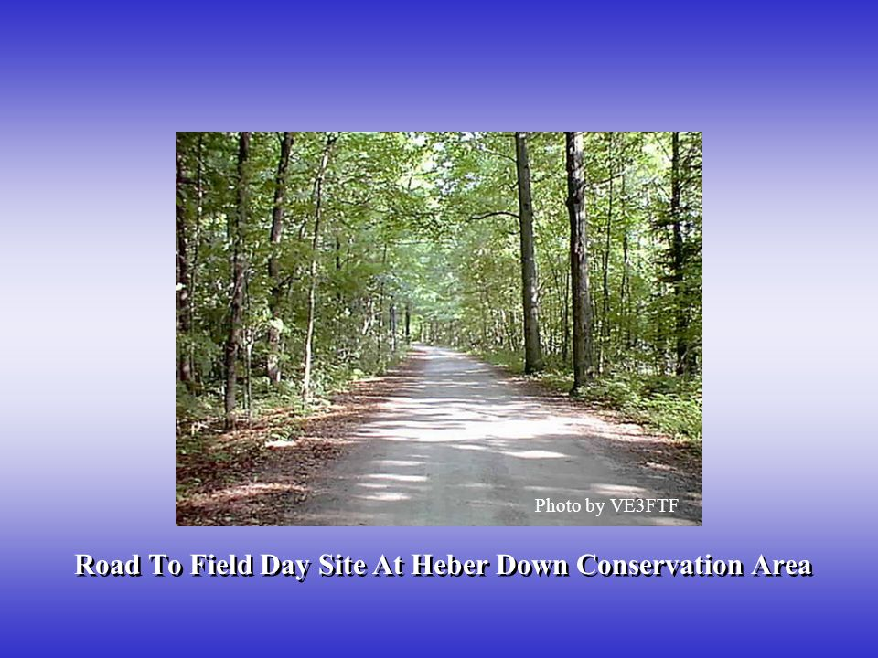 Road To Field Day Site At Heber Down Conservation Area