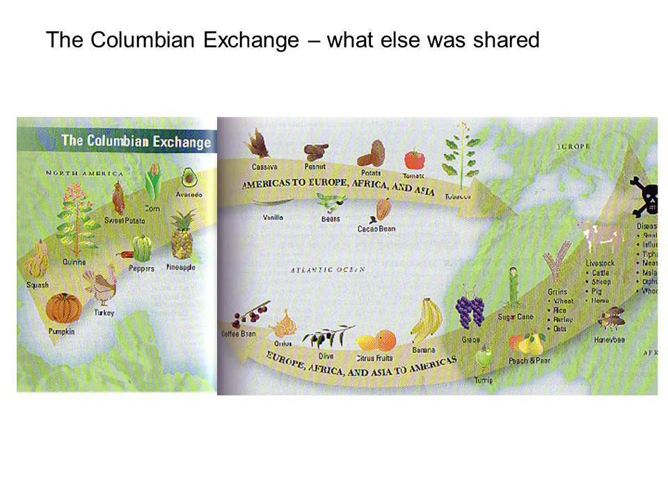 The Columbian Exchange – what else was shared
