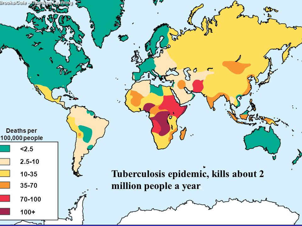 Tuberculosis epidemic, kills about 2 million people a year.