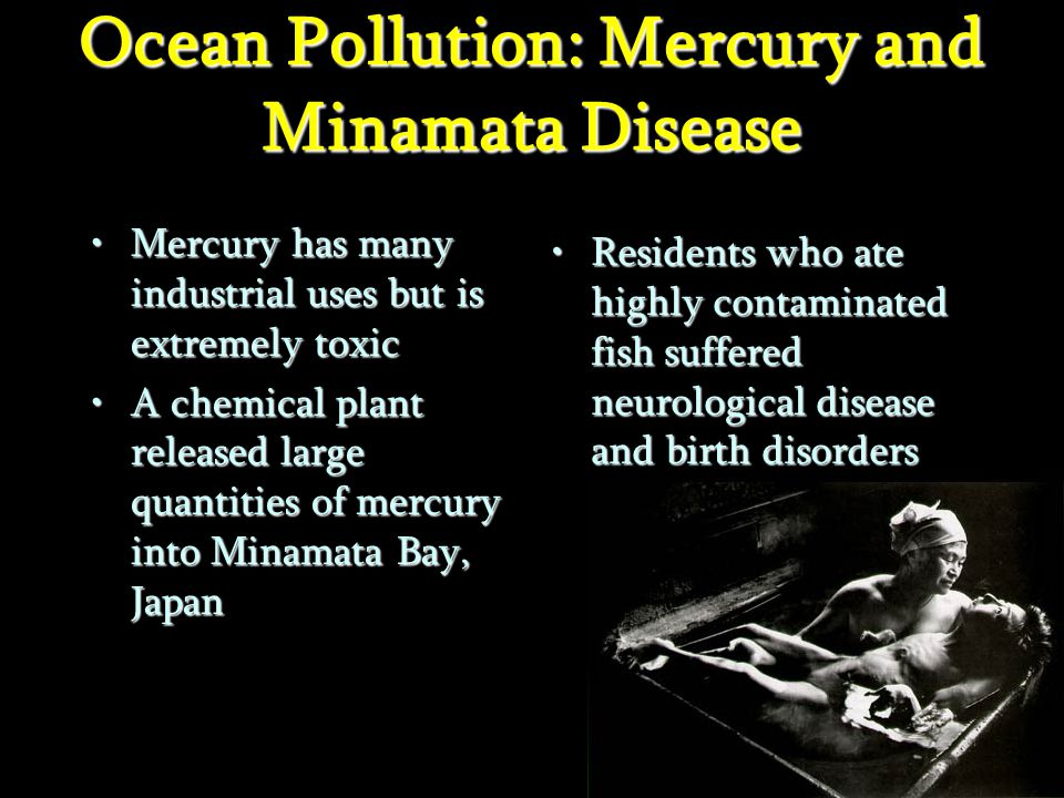 Ocean Pollution: Mercury and Minamata Disease