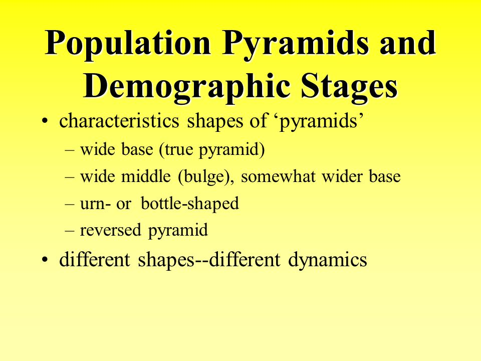 Population Pyramids and Demographic Stages