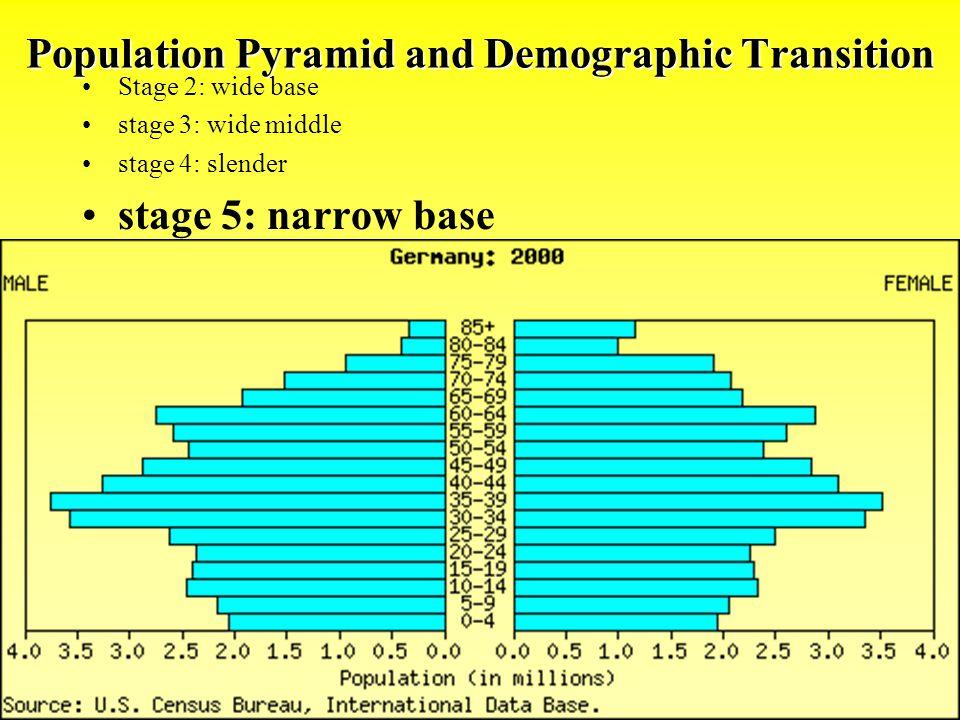 Population Pyramid and Demographic Transition