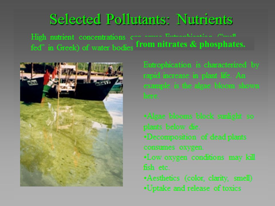 from nitrates & phosphates.