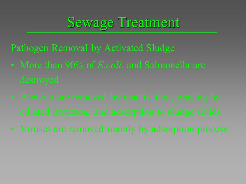 Sewage Treatment Pathogen Removal by Activated Sludge
