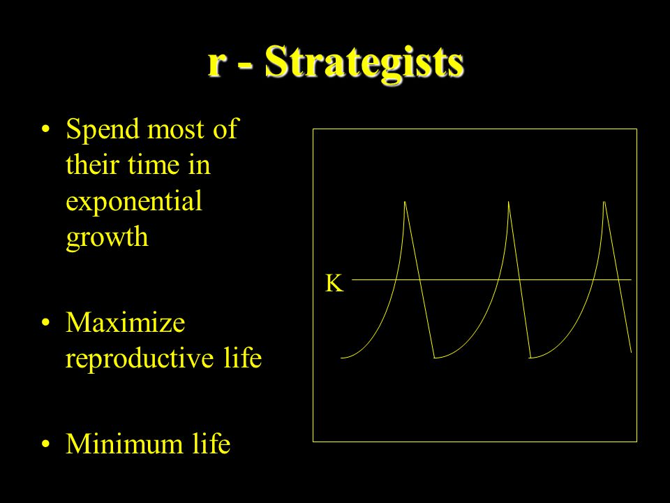 r - Strategists Spend most of their time in exponential growth