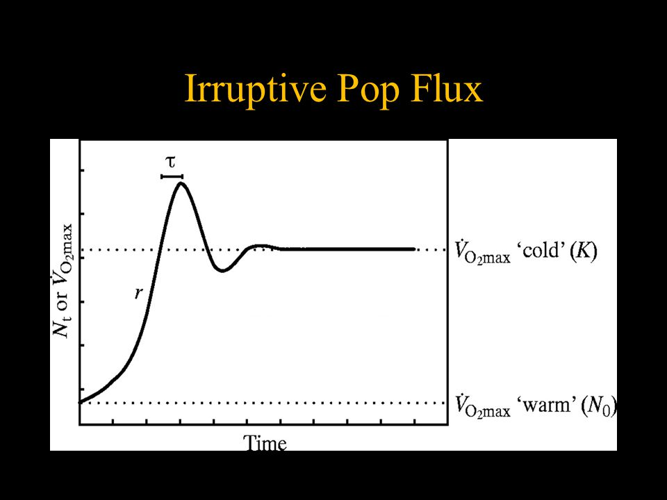Irruptive Pop Flux