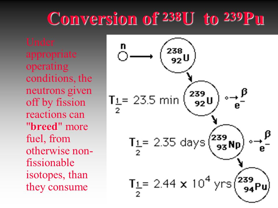 Conversion of 238U to 239Pu