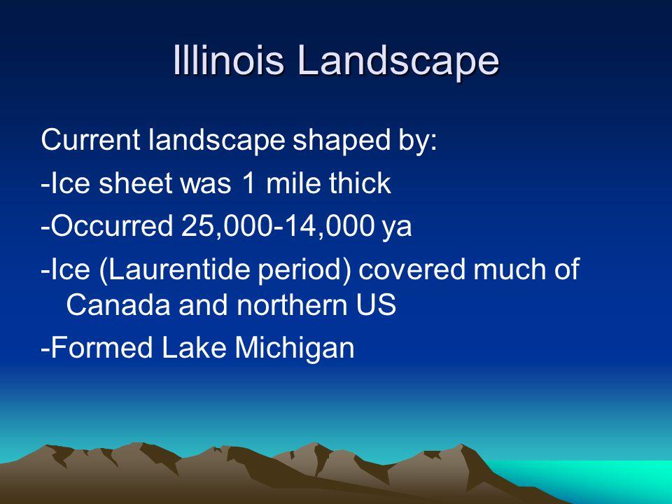 Illinois Landscape Current landscape shaped by: