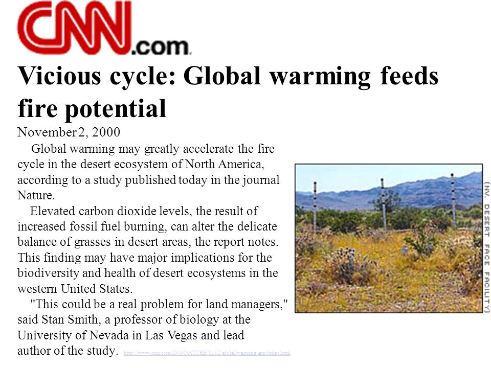 Vicious cycle: Global warming feeds fire potential