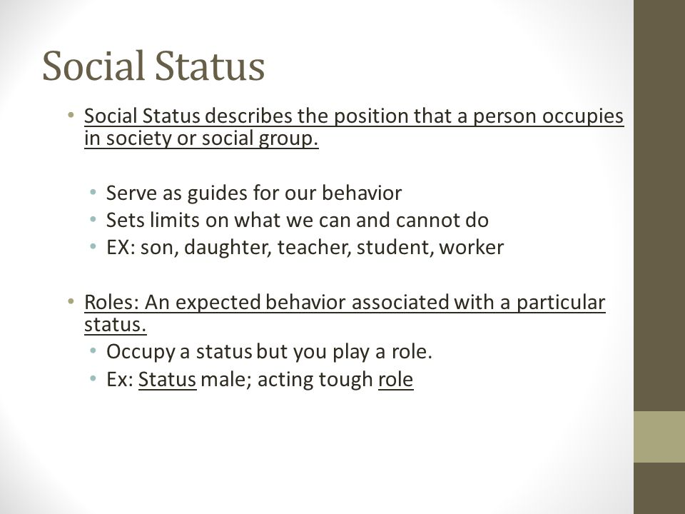 Social Status Social Status describes the position that a person occupies in society or social group.