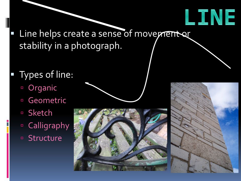 LINE Line helps create a sense of movement or stability in a photograph. Types of line: Organic.