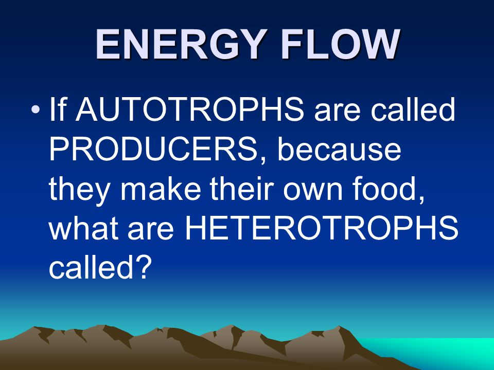 ENERGY FLOW If AUTOTROPHS are called PRODUCERS, because they make their own food, what are HETEROTROPHS called