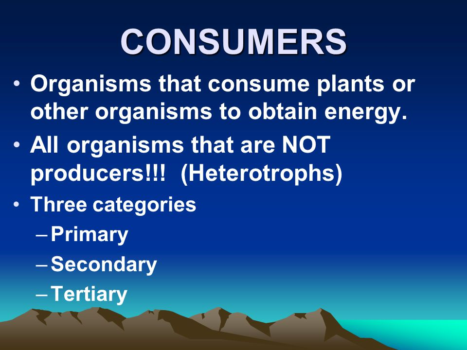 CONSUMERS Organisms that consume plants or other organisms to obtain energy. All organisms that are NOT producers!!! (Heterotrophs)