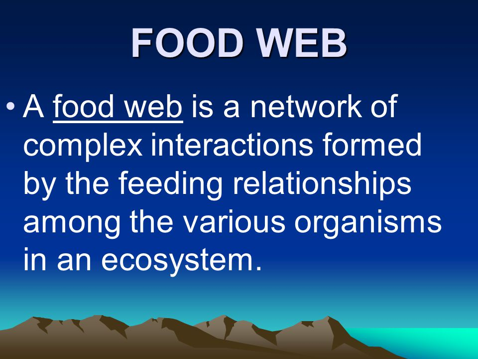 FOOD WEB A food web is a network of complex interactions formed by the feeding relationships among the various organisms in an ecosystem.