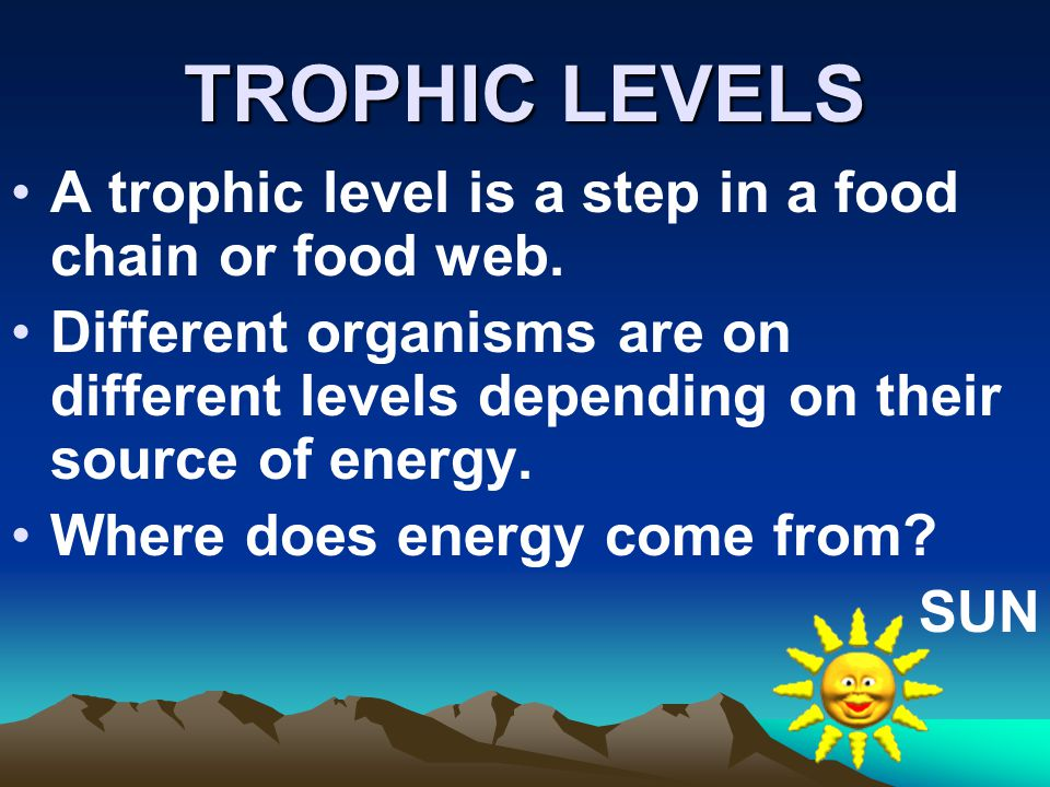 TROPHIC LEVELS A trophic level is a step in a food chain or food web.