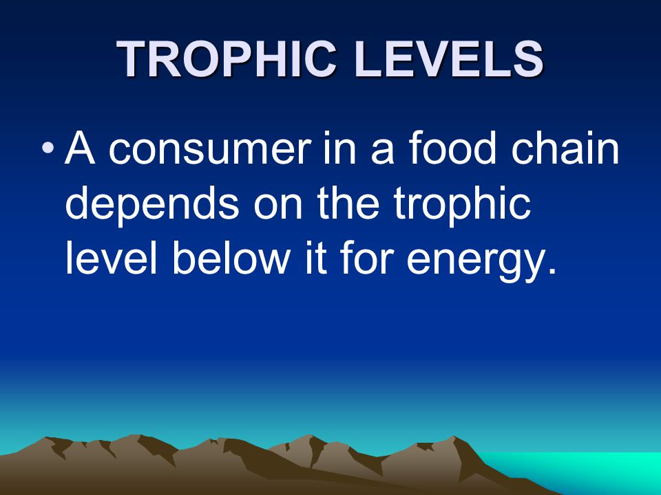 TROPHIC LEVELS A consumer in a food chain depends on the trophic level below it for energy.