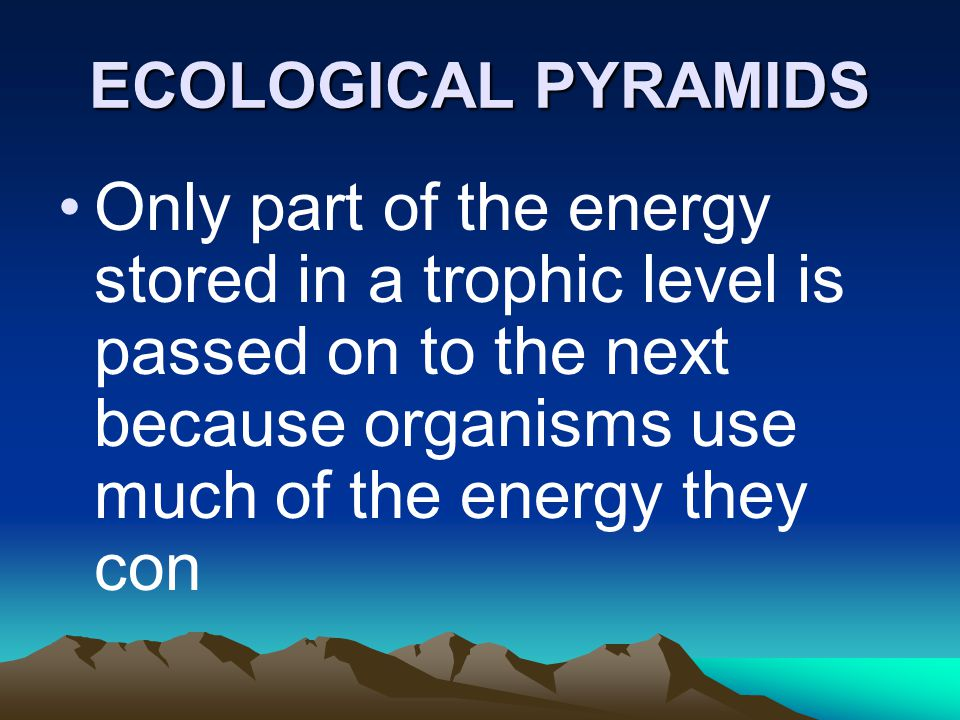 ECOLOGICAL PYRAMIDS Only part of the energy stored in a trophic level is passed on to the next because organisms use much of the energy they con.