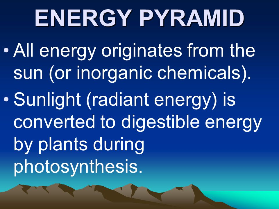 ENERGY PYRAMID All energy originates from the sun (or inorganic chemicals).