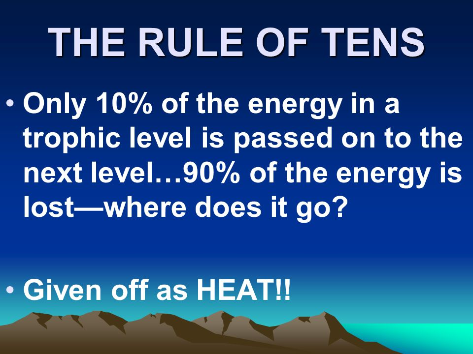 THE RULE OF TENS Only 10% of the energy in a trophic level is passed on to the next level…90% of the energy is lost—where does it go
