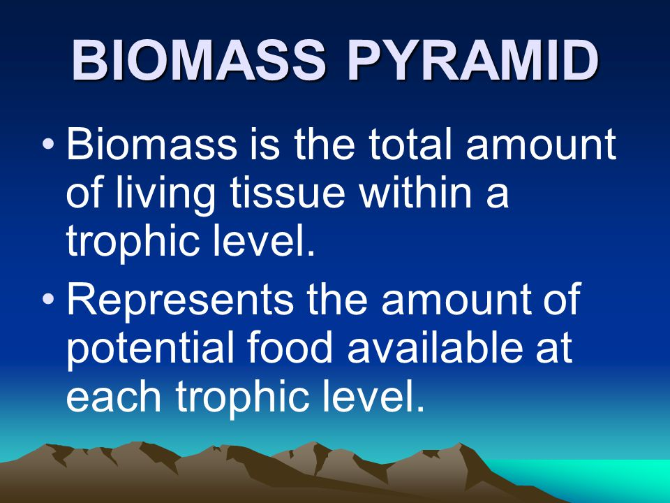 BIOMASS PYRAMID Biomass is the total amount of living tissue within a trophic level.