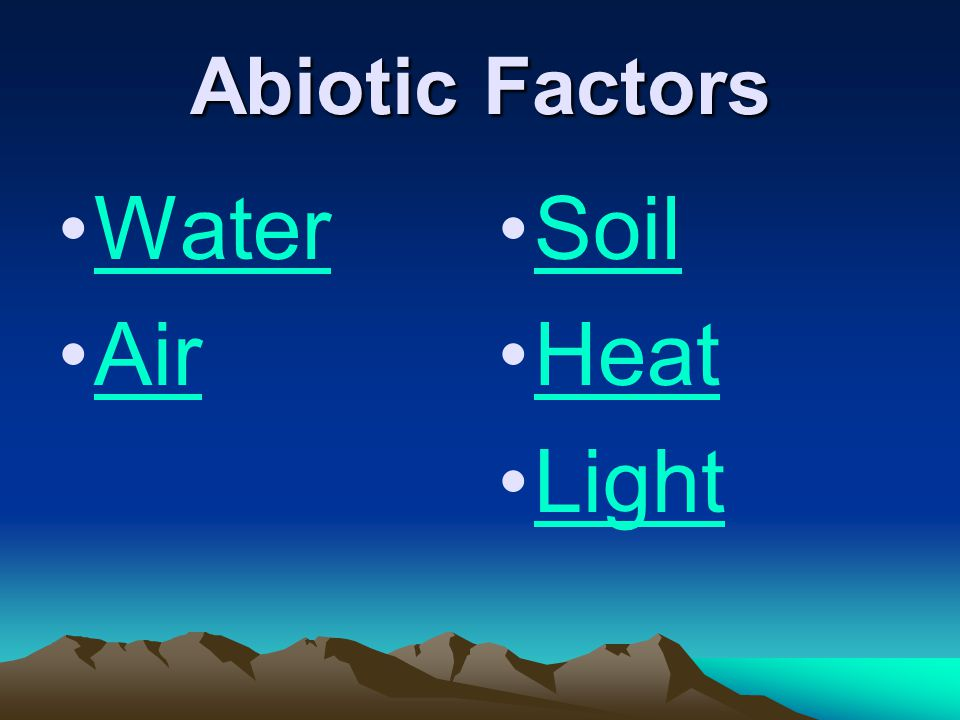 Abiotic Factors Water Air Soil Heat Light