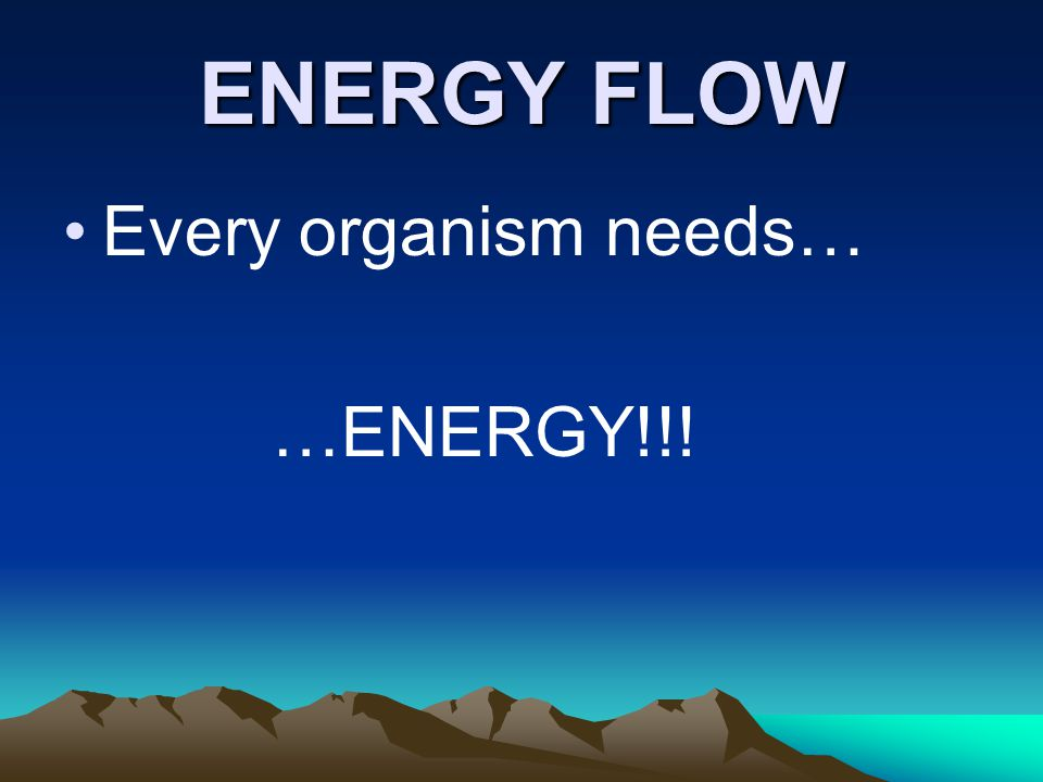 ENERGY FLOW Every organism needs… …ENERGY!!!