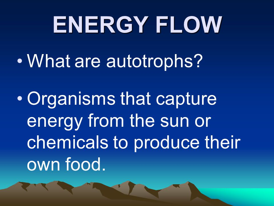 ENERGY FLOW What are autotrophs