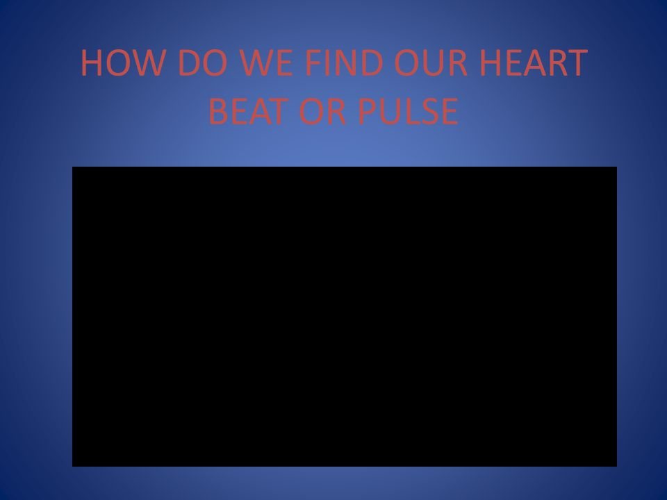 HOW DO WE FIND OUR HEART BEAT OR PULSE