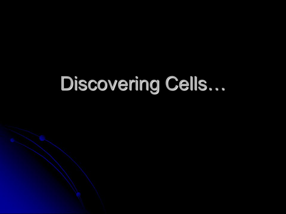 Discovering Cells…