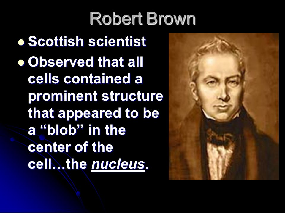 Robert Brown Scottish scientist