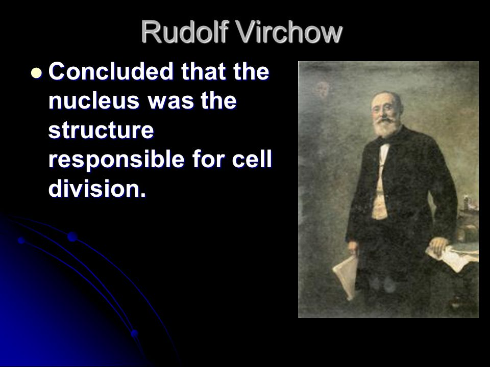 Rudolf Virchow Concluded that the nucleus was the structure responsible for cell division.