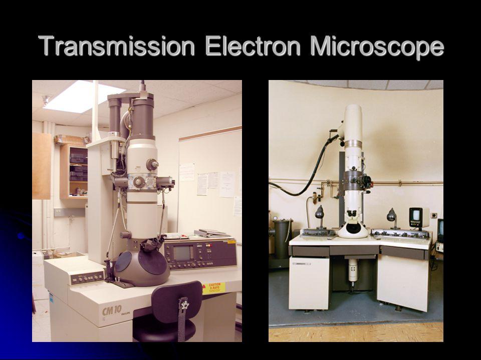 Transmission Electron Microscope