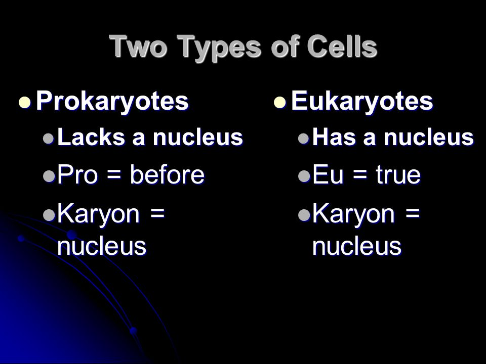 Two Types of Cells Prokaryotes Pro = before Karyon = nucleus