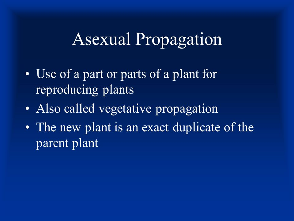 Asexual Propagation Use of a part or parts of a plant for reproducing plants. Also called vegetative propagation.