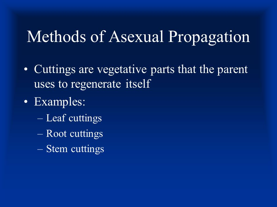 Methods of Asexual Propagation