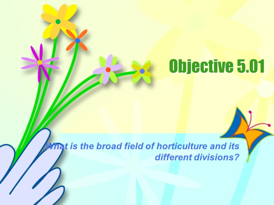 What is the broad field of horticulture and its different divisions