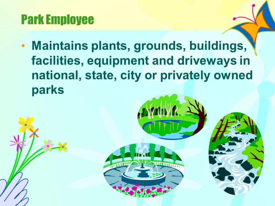 Park Employee Maintains plants, grounds, buildings, facilities, equipment and driveways in national, state, city or privately owned parks.