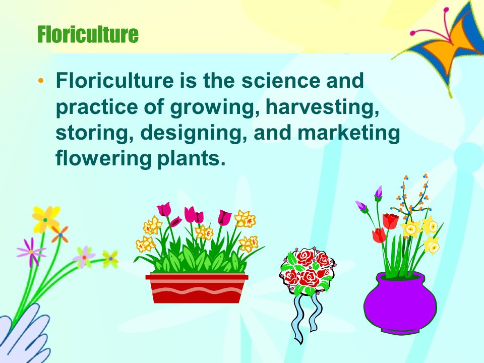 Floriculture Floriculture is the science and practice of growing, harvesting, storing, designing, and marketing flowering plants.