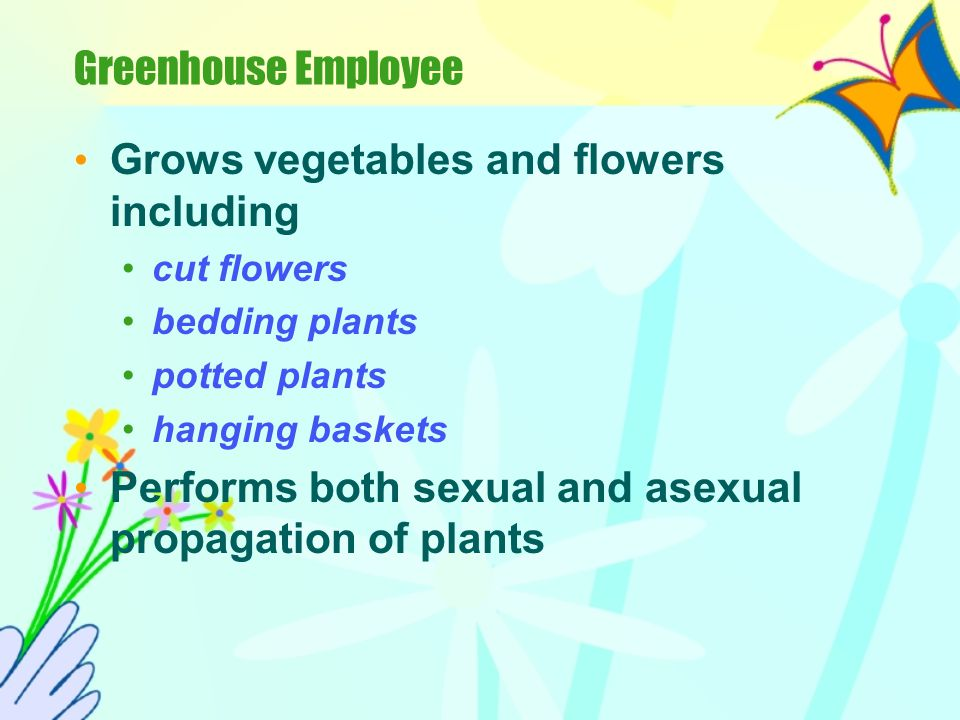 Grows vegetables and flowers including