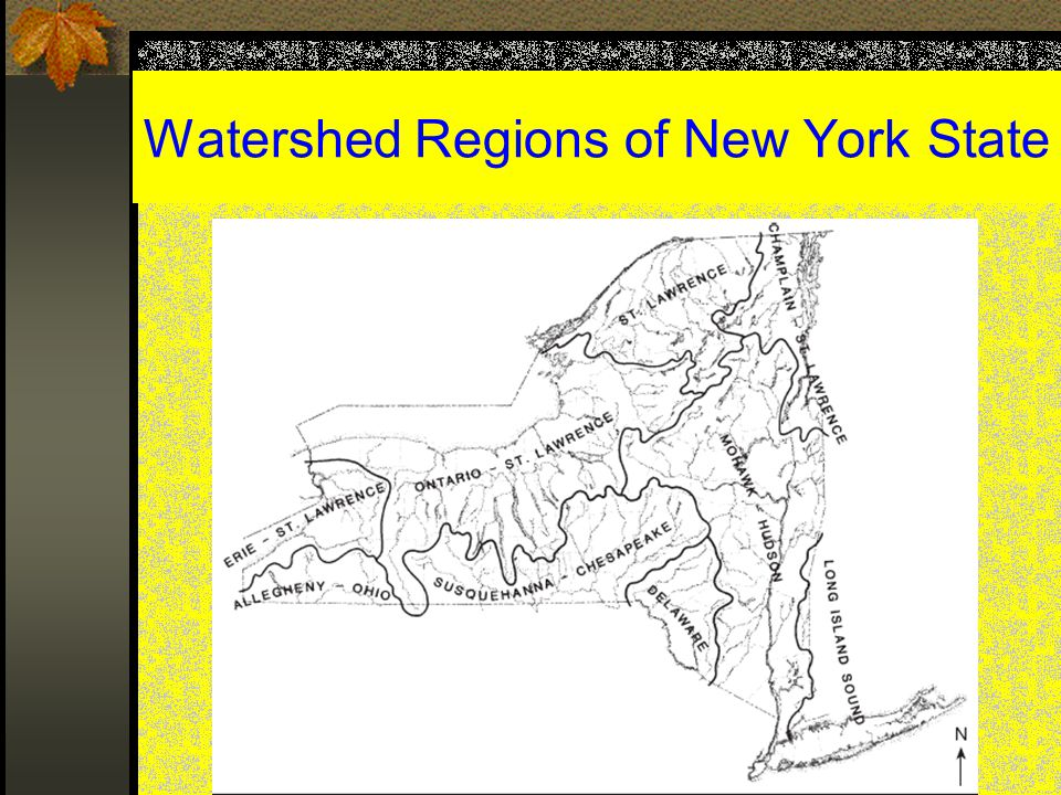 Watershed Regions of New York State