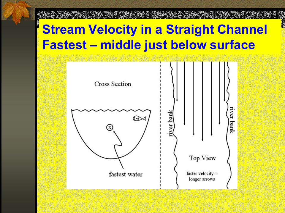 Stream Velocity in a Straight Channel Fastest – middle just below surface