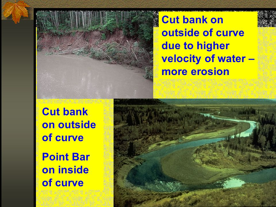 Cut bank on outside of curve due to higher velocity of water – more erosion
