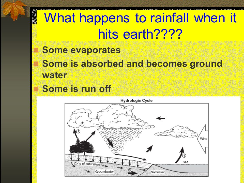 What happens to rainfall when it hits earth