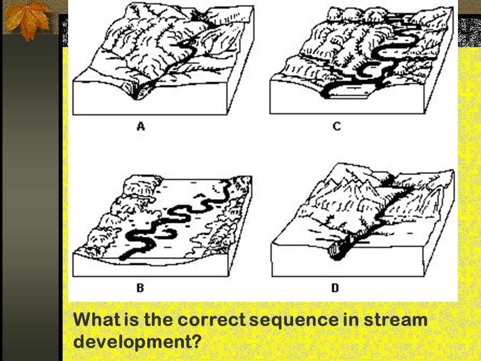 What is the correct sequence in stream development